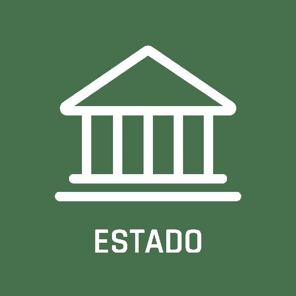 icon-solution-estado